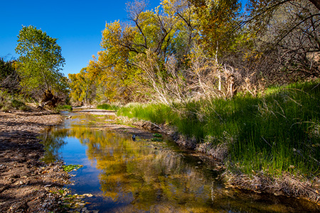 File: Cienega Creek