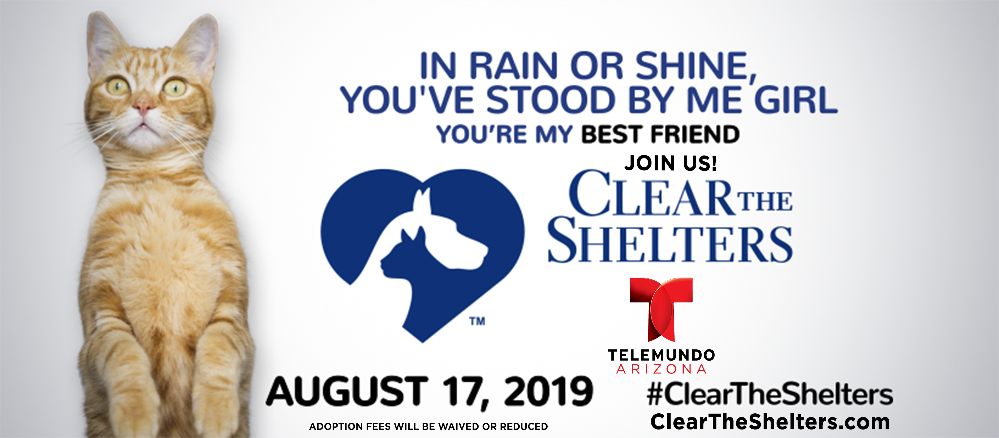 Clear The Shelters 2019